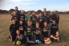 Our U12 Girls accomplished 2nd place this fall in MYSL